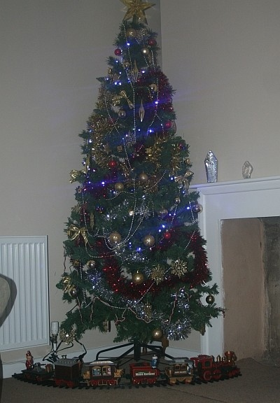 Norway Spruce Christmas Tree - The Nicest Christmas Tree Ever