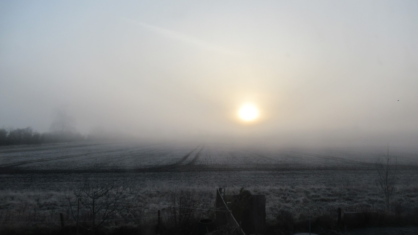 Frosty Morning in Honington